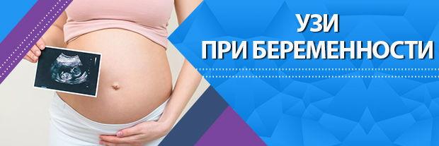 УЗИ скрининг при беременности в Клинике Мир Здоровья Санкт-Петербург
