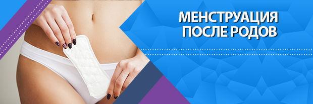 Менструация после родов | Статьи | Мир Здоровья СПб